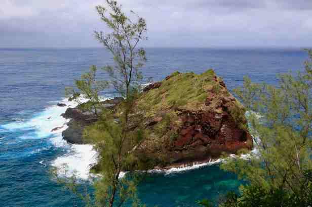 photo 13- La Petite-île, lieu de nidification naturellement protégé des Puffins du Pacifique