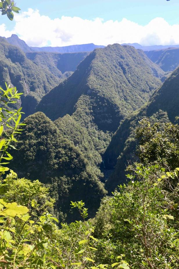 photo 1bis- pentes escarpées et boisées en paysage volcanique