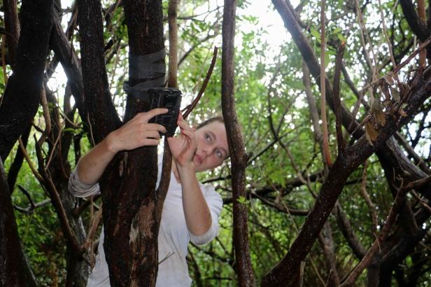 photo 25c- Solenn installe une caméra de surveillance